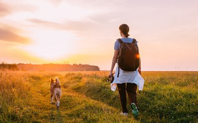 Why Physical Activity is Good for Our Body and Our Mind